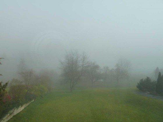 Das Jahr 2011 liegt noch im Nebel