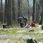 Kamerateam und Pferd