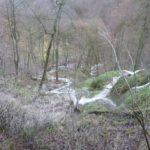 Die Ausläufer des Wasserfalls