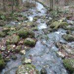 Quelle des Wasserfalls bei Bad Urach