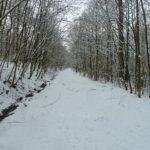 Verschneiter Wanderweg in der Röhn