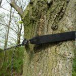 Tree Hugger Baumschutz