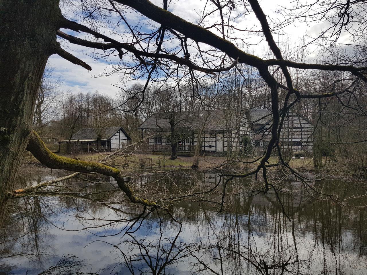 Ein Blick durch die Äste auf Haus Wildenrath